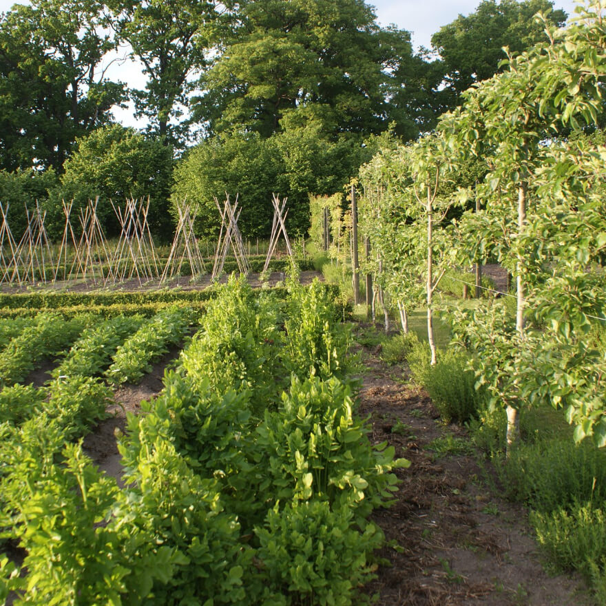 De Tuinen van Weldadigheid - Kwekerij bijzondere groente, zaden en pootgoed